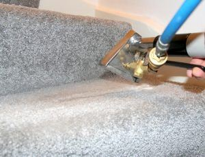 carpet cleaning earl's court